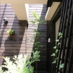 ak patio 8